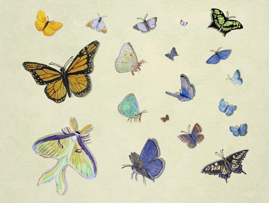 Casart Butterfly Mural Composite