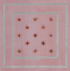 Casart Star Panel Insert in assorted colors