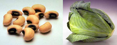 Black-eyed peas and cabbage_casartblog