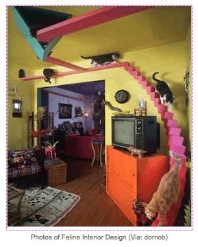 mod-cat-design_Trendhunter_casartblog