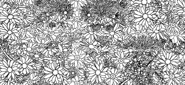 Casart_FlowerPower_outlines, as seen on Slipcovers for your walls, casartblog