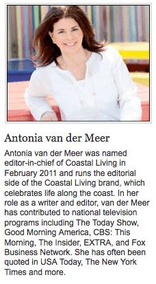Antonia van der Meer on Slipcovers for your walls, casartblog