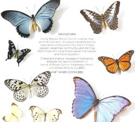Butterfly for breast cancer_casartblog