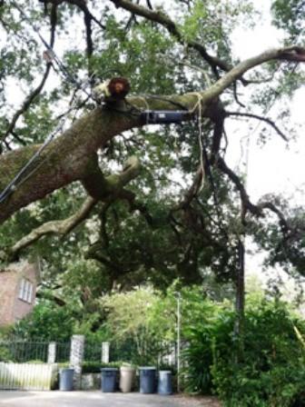 hurricane Isaac 008_casartblog