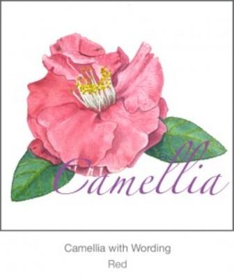 Casart_red_Camellia_casartblog