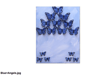 butterfly-blue-angels_Nadine Kalachnikoff