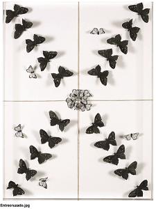 butterfly-b&w_Nadine Kalachnikoff