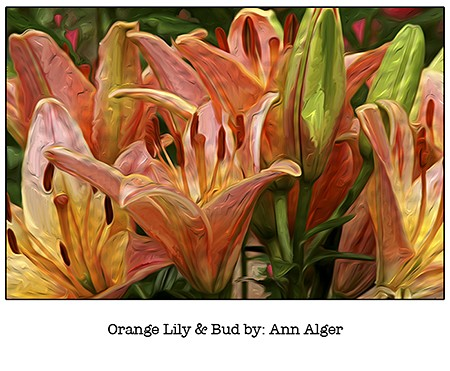 Ann Alger Orange Lily_for Casart coverings