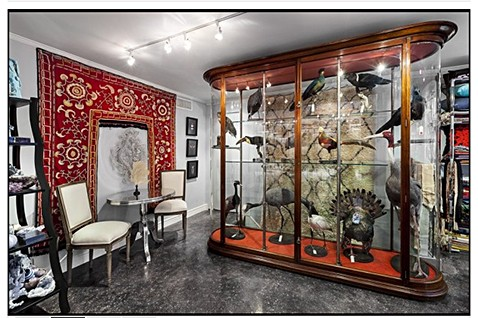 Cabinet of Curiosities on Slipcovers for your walls, casartblog