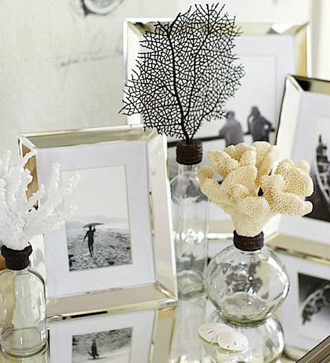 collection-of-seashell-glass-bottles-and-picture-frames on Slipcovers for your walls, casartblog