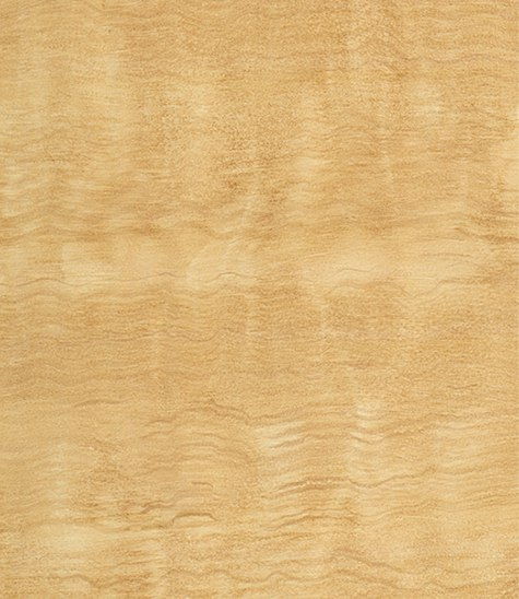 3_Casart coverings Natural Faux Satinwood temporary wallpaper on Slipcovers for your walls, casartblog