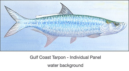 Casart coverings_Tarpon panel panel for Gulf Coast Recovery temporary wallpaper panel_casartblog on Slipcovers for your walls