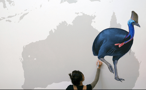 Cassowary bird painted by Jane Kim on Slipcovers for your walls, casartblog