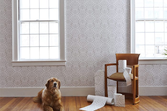 Lovelace POZdesign Room_Casart Coverings removable wallpaper