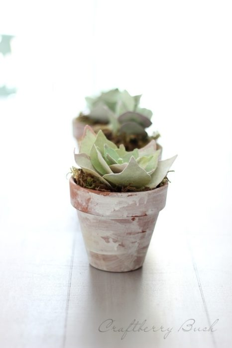 Adorable DIY Paper Succulent on casartblog