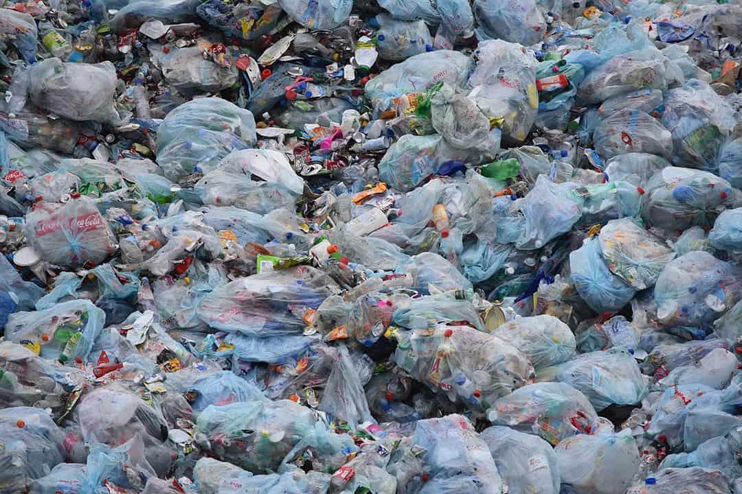 Waste Mentality Garbage Dump_casartblog