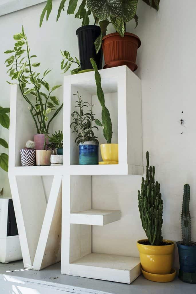 Love Plants photo by Ksenia_casartblog