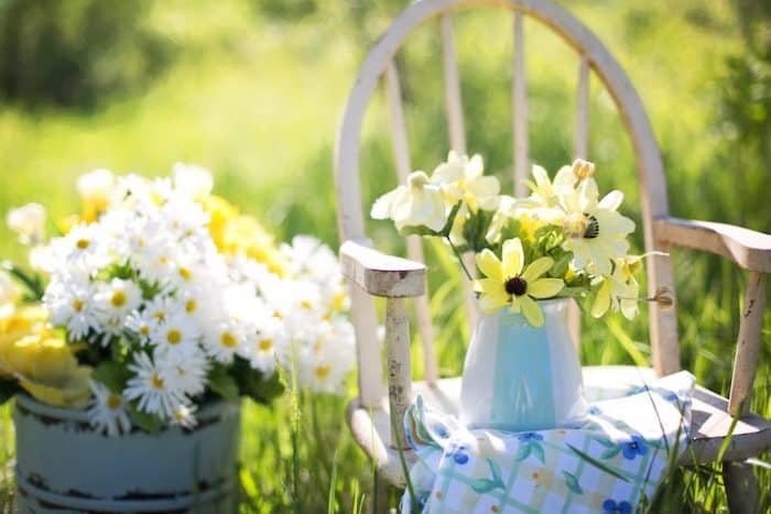 Refresh Your Space for Spring_jill wellington_pexels_casartblog