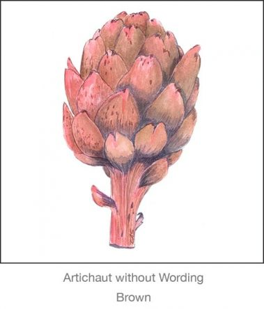 Casart Artichoke_Brown without wording_4x-b Botanicals