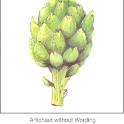 Casart Artichoke_Green without wording_1x-b Botanicals