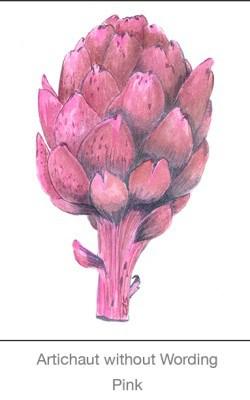 Casart Artichoke_Pinkwithout wording 2x-b Botanicals