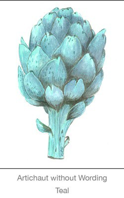 Casart Artichoke_Teal without wording_3x-b Botanicals