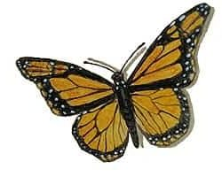 Casart_Monarch Butterfly_12