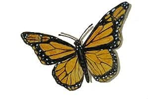 Casart coverings Butterfly Elements Monarch