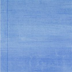 Casart coverings Lapis Raw Silk_Organics_2x
