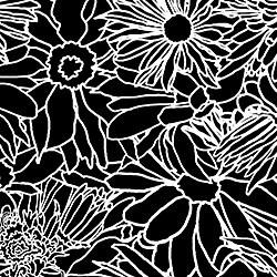 Casart_White on Black Flower Power_1