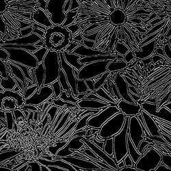 Casart_Brocade White on Black Flower Power Botanicals_7