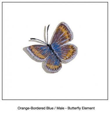 Casart_Orange-Bordered Blue Butterfly Detail_14x