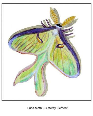 Casart Lunar Moth - butterfl- Designs & Muralsy_6x