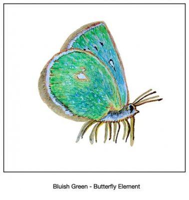 Casart Bluish Green Butterfly- Designs & Murals_7x