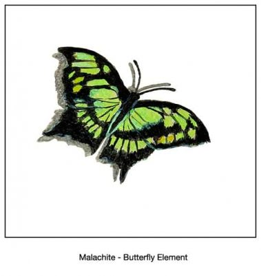 Casart_Malachite Butterfly Detail_9x
