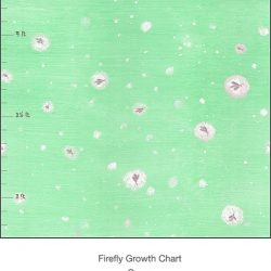 Casart Fireflies light green detail growth chart - T3 Colection