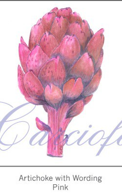 Casart Pink Artichoke with wording 2x