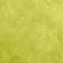 Casart Lime Colorwash_Wallfinish_13x
