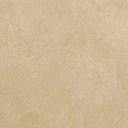 Casart Tan Colorwash_Wallfinish_4