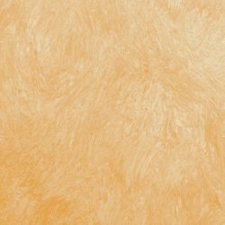 Casart Orange Colorwash_Wallfinish_8x