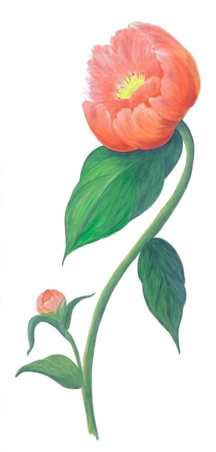 Casart Rose Single Peony 4