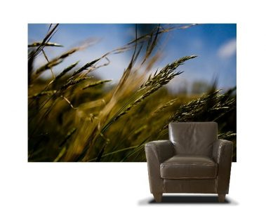 Casart coverings Photography Set 2 Field Breeze Photo_16x
