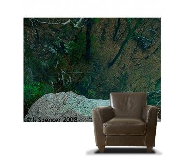 Casart coverings Photography Set 1 Elevation Photo_5x