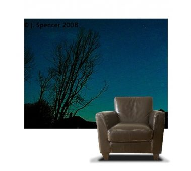 Casart coverings Photography Set 1 Starry Sewanee Night Photo_7x