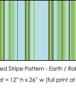 Casart Earth/ Robin's Egg Stripes Combo_5x