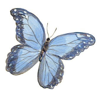 Casart_Blue Morpho Black Wing Butterfly 3