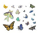 Casart_Butterfly Composite Sheet_1