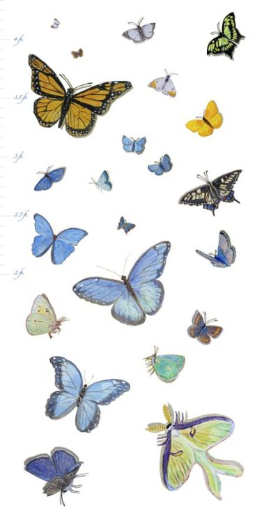 Casart Butterfly Growth Chart removable wallpaper