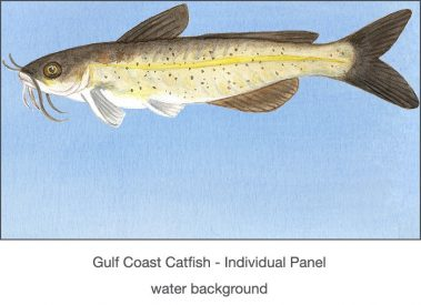Casart_Gulf Coast Catfish water_2x