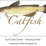 Casart_Gulf Coast Catfish white & wording_3x